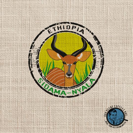 Café-sidamo-éthiopie
