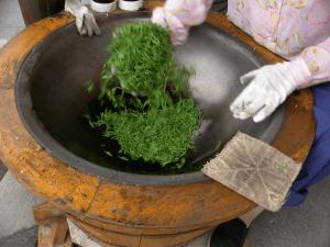 sechage thé vert